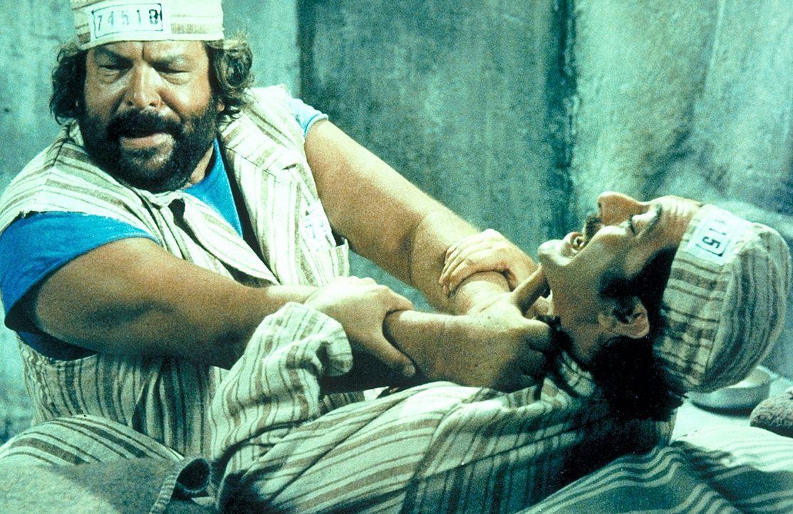 Im Gefängnis trifft Joe (Bud Spencer, l.) auf seinen alten Widersacher Manuel (Mario Scarpetta, r.). In gewohnter Manier rechnet er mit ihm ab ...