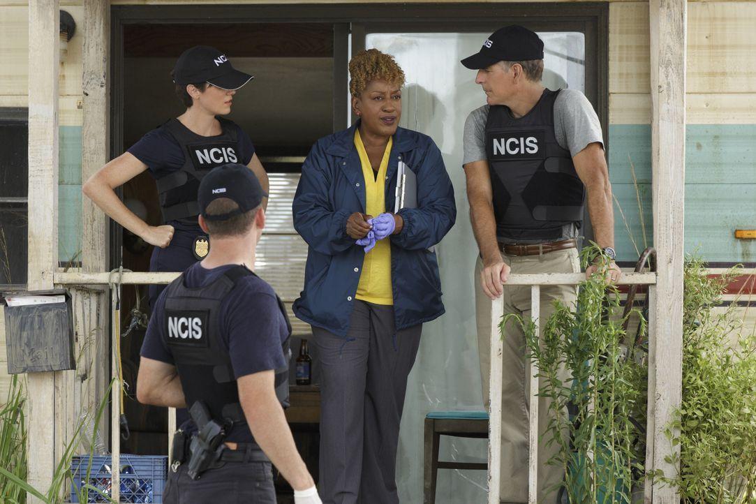 Als im Hafen von New Orleans in einer Kiste mit  Garnelen ein Bein mit einem Navy-Stiefel daran gefunden wird, beginnen Special Agent Pride (Scott B... - Bildquelle: 2014 CBS Broadcasting Inc. All Rights Reserved.