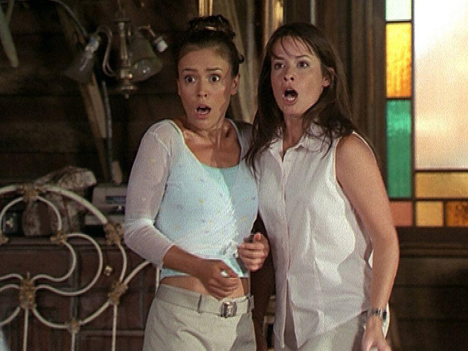 Phoebe (Alyssa Milano, l.) und Piper (Holly Marie Combs, r.) trauen ihren Augen nicht, denn plötzlich haben sie einen Bruder und niemand weiß, was... - Bildquelle: Paramount Pictures